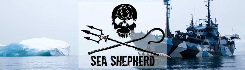 sea shepherd campaign patches logo 39 s ebay. Black Bedroom Furniture Sets. Home Design Ideas